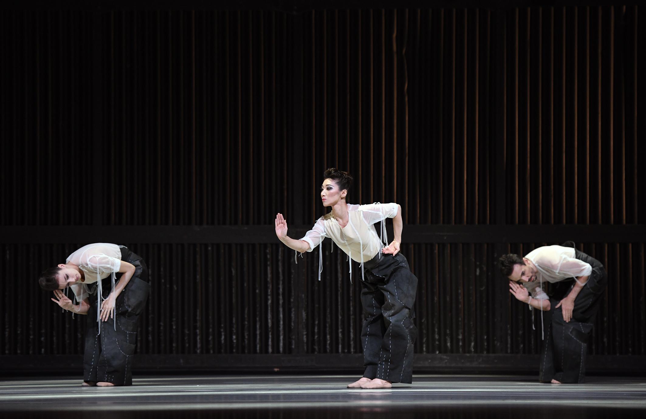 Nackt klassisches ballett natury Berichte